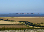 Holy Island View, Northumberland